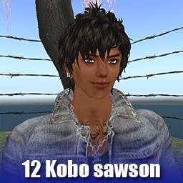 12Kobo sawson.jpg